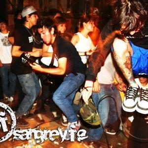 Image for 'Sangre y Fe'