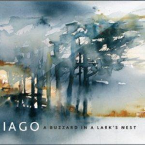 Image for 'IAGO Band'