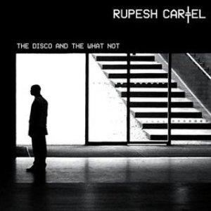 Imagen de 'The Disco And The What Not (Bonus Disc)'