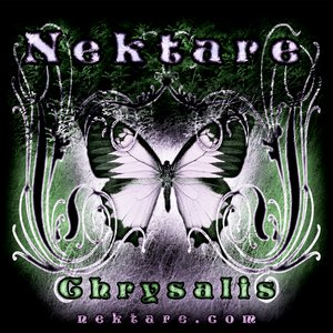 Image for 'Nektare'