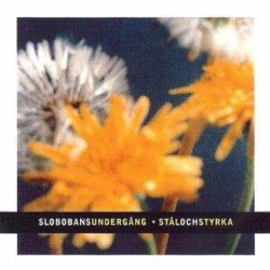Image for 'Stål och styrka'