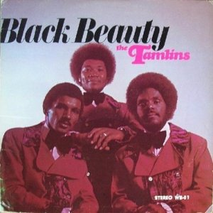 Image for 'Black Beauty'