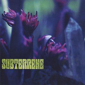 Image for 'Subterrene'