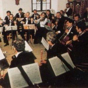 Image for 'Collegium Aureum'