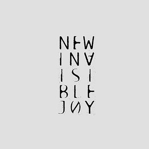 Image for 'New Invisible Joy'
