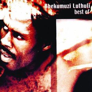 Image for 'Best of Bhekumuzi Luthuli'