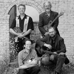 Image for 'Modern Mandolin Quartet'