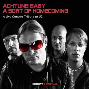 Immagine per 'A Sort of Homecoming (A Live Concert Tribute to U2)'