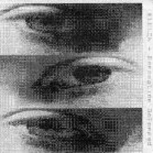 Bild für 'Perception Deformed'