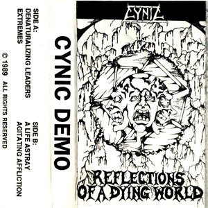 Image for '1989 Demo: Reflections of a Dying World'
