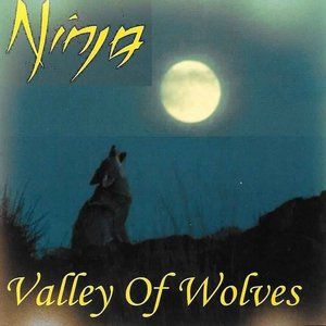 Image pour 'Valley of Wolves'