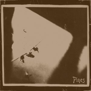 Image for 'Pines'