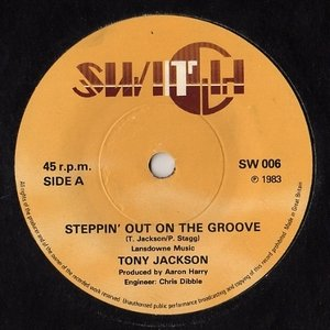 Image for 'Steppin' Out On The Groove'