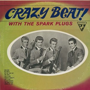 Image for 'The Spark Plugs'