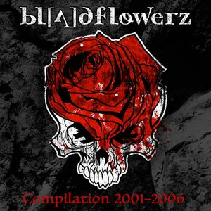 Image for 'Compilation 2001-2006'