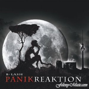 Image for 'Panikreaktion'