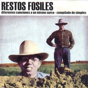 Image for 'Diferentes canciones a un mismo surco'