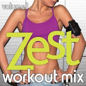 Immagine per 'The Zest Workout Mix Vol. 1'