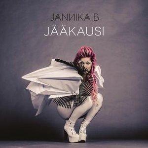 Image for 'Jääkausi'