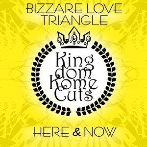 Image for 'Bizzare Love Triangle'