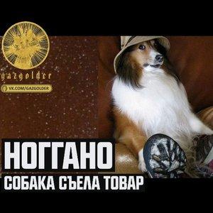 Image for 'Собака съела товар'