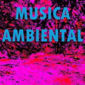 Image for 'Musica Ambiental'