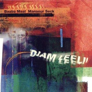 Image for 'Djam Leelii: The Adventurers'