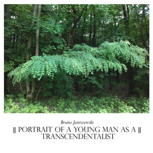 Image for 'Portrait of a Young Man as a Transcendentalist'