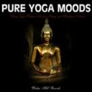 Image for 'The Yoga Specialists'