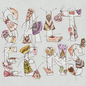 Imagen de 'Moths'