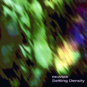 Image for 'Settling Density'