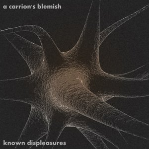 Image for 'Known Displeasures'