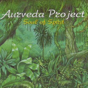 Image for 'Aurveda Project'