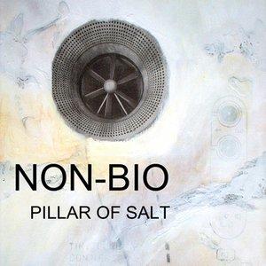 Image for 'Pillar of Salt'