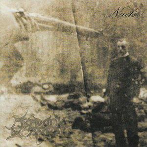 Image for 'Nadir'