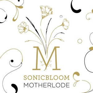 Image for 'Motherlode'