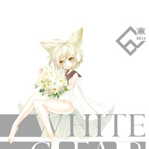 Image for 'white clear'