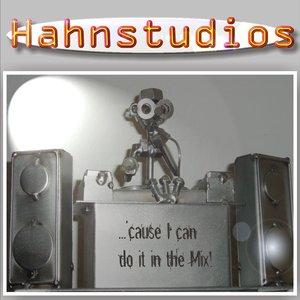 Immagine per 'Hahnstudios'