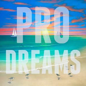 Image for 'Pro Dreams'