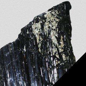 Bild für 'BLK EP'
