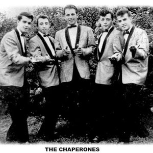 Image for 'The Chaperones'
