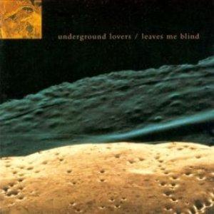 Imagem de 'Leaves Me Blind'