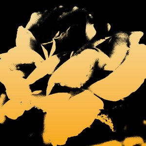 Immagine per 'A Beautiful Life'