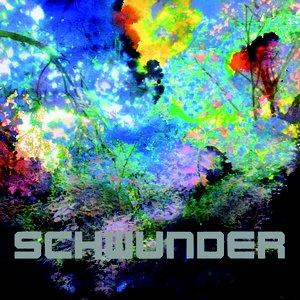 Image for 'Schwunder'