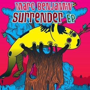 Bild für 'Surrender EP'