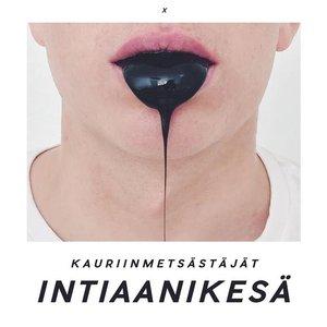 Image for 'Intiaanikesä'