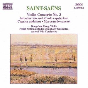 Image for 'Violin Concerto No. 3 in B minor, Op. 61: II. Andantino quasi allegretto'