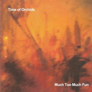 Image for 'Much Too Much Fun'
