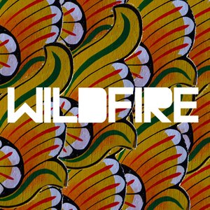 Image for 'Wildfire (feat. Little Dragon)'