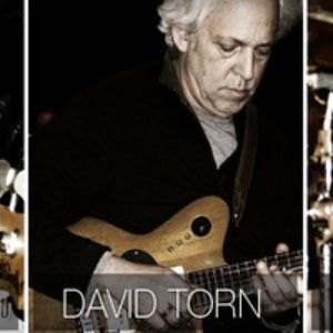 Image for 'Levin Torn White'